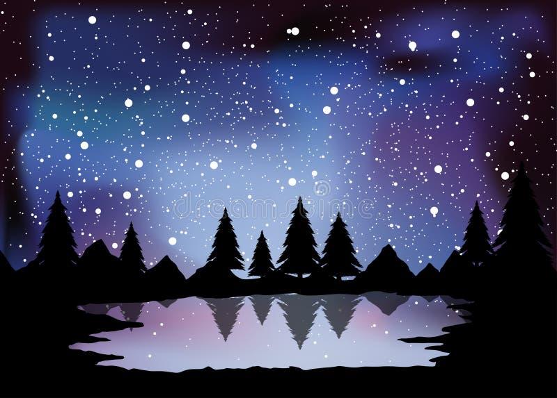 pine forest landscape illustration at night time stock image