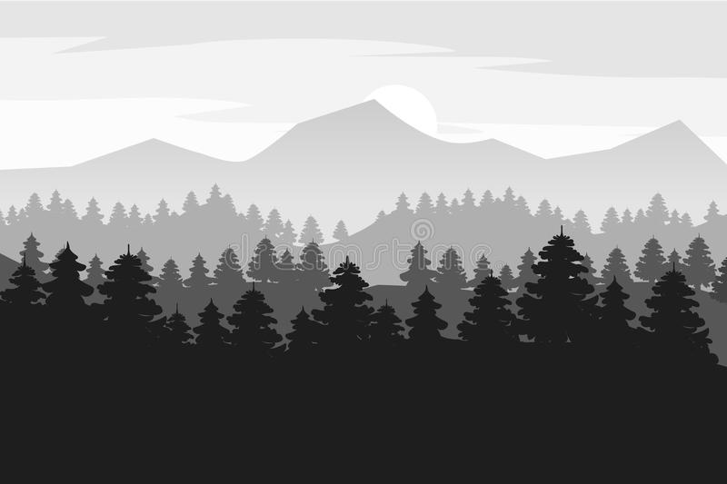 Pine forest and mountains vector backgrounds. Panorama landscape spruce silhouette illustration, vector, isolated stock illustration
