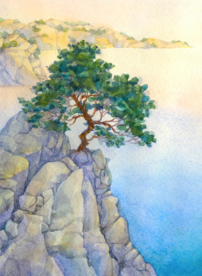 Pine on a high rocky cliff above the sea stock image