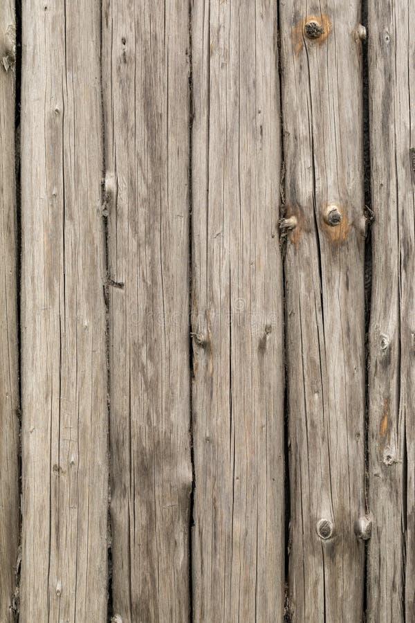 Pine logs. Log wall Texture of natural pine logs. Brown natural wood texture stock photos