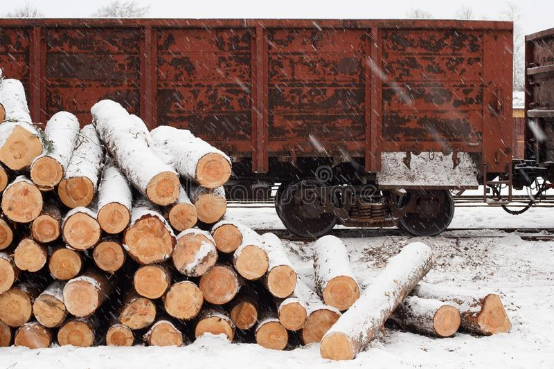 Pine logs on the railroad platform in winter royalty free stock photo