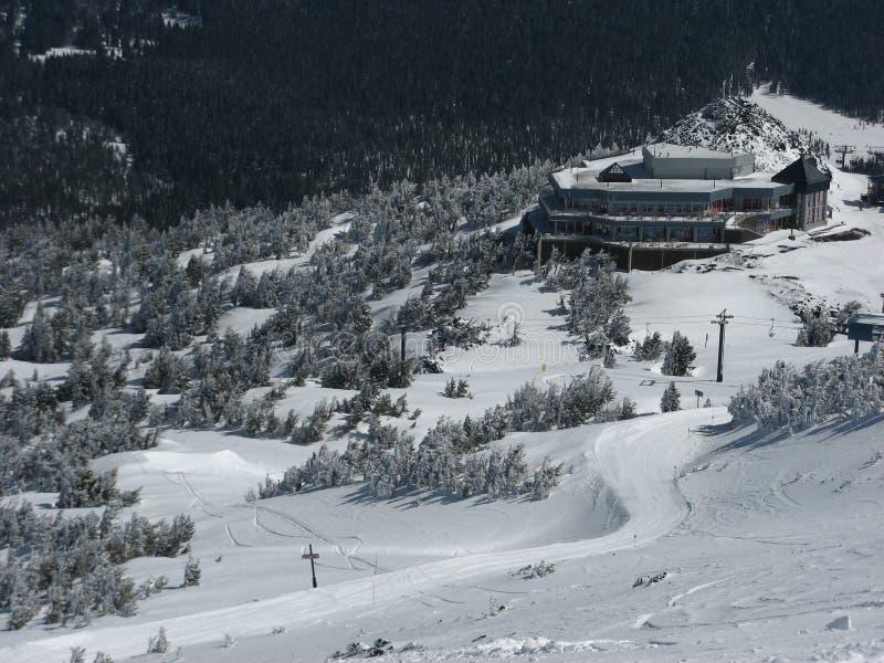Pine Marten Lodge stock image