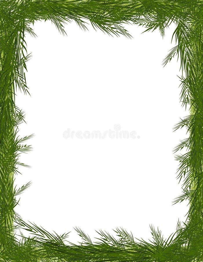 Pine Needle Tree Branch Frame Stock Illustration - Illustration of ...