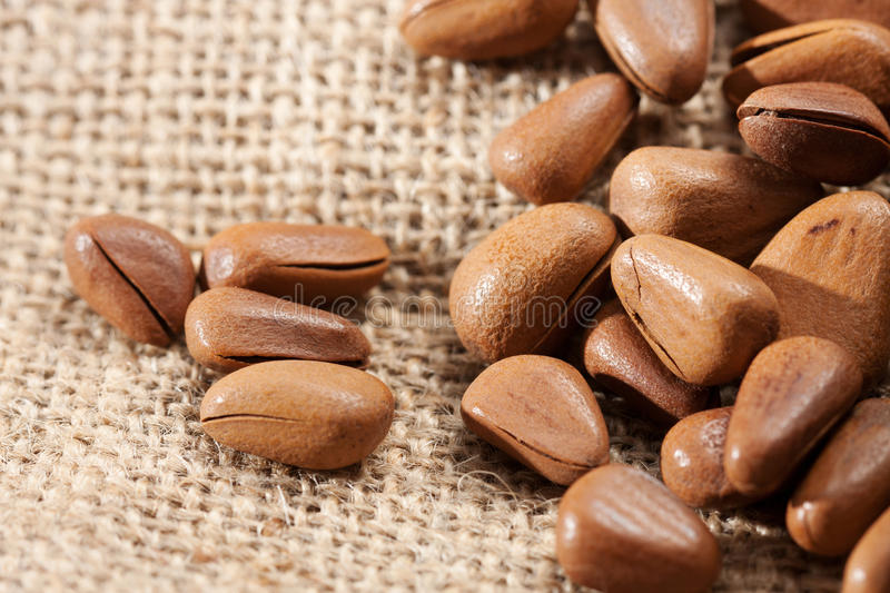 Download Pine Nut stock photo. Image of vegetarian, nutritious - 26632462
