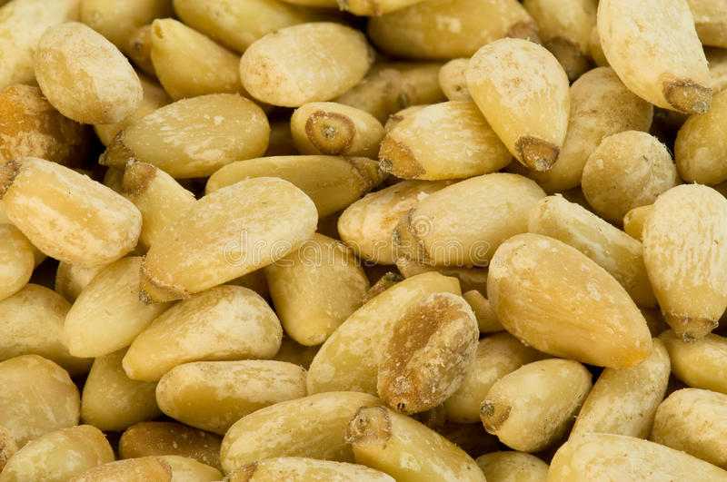 Pine nuts. Background close-up shot stock photo