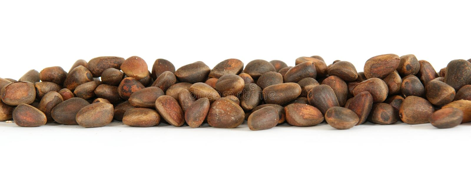 Pine nuts stock images