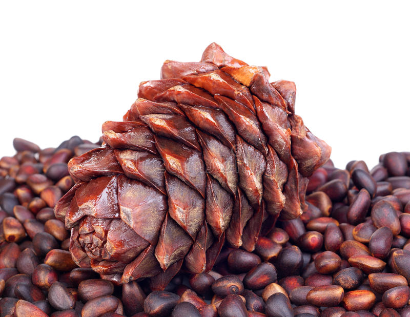 Download Pine nuts stock image. Image of edible, nutrition, sweet - 21946395