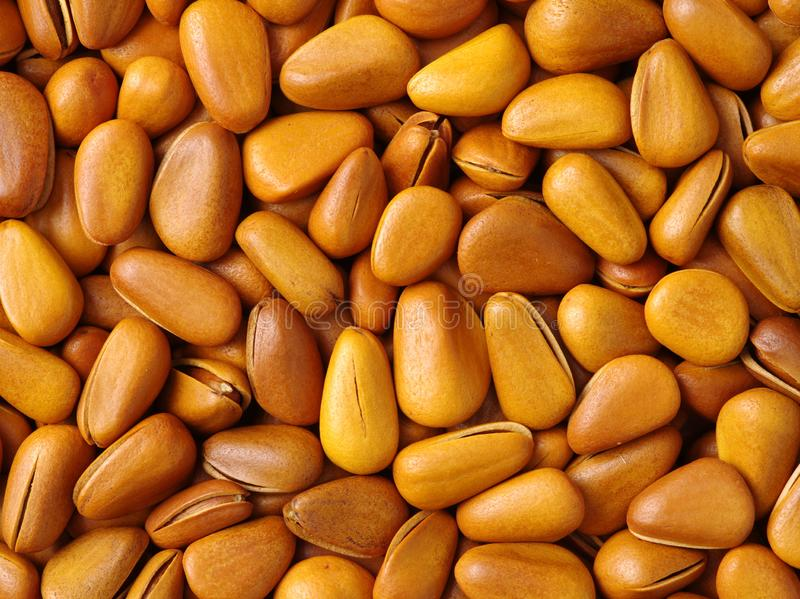 Pine nuts. Nutrition, macro. Pine nuts Nutrition macro background stock images