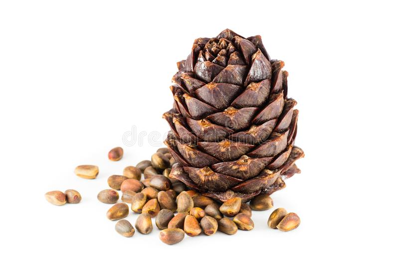 Pine nuts and ripe cones on a white background stock photography