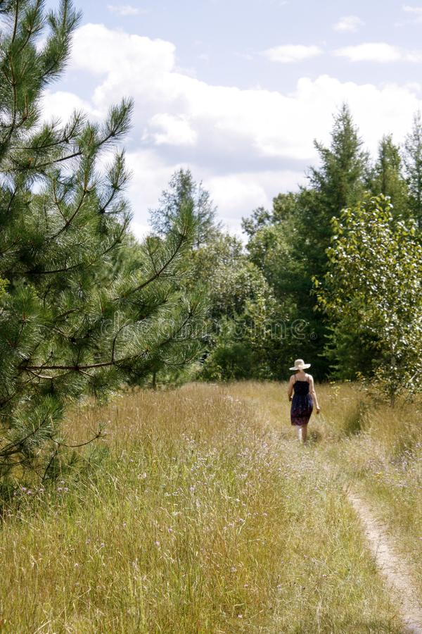 Pine passed on path portrait. Dirt path leads into forest area. One woman walks on path toward forest in background. She passes a pine tree in foreground royalty free stock photography