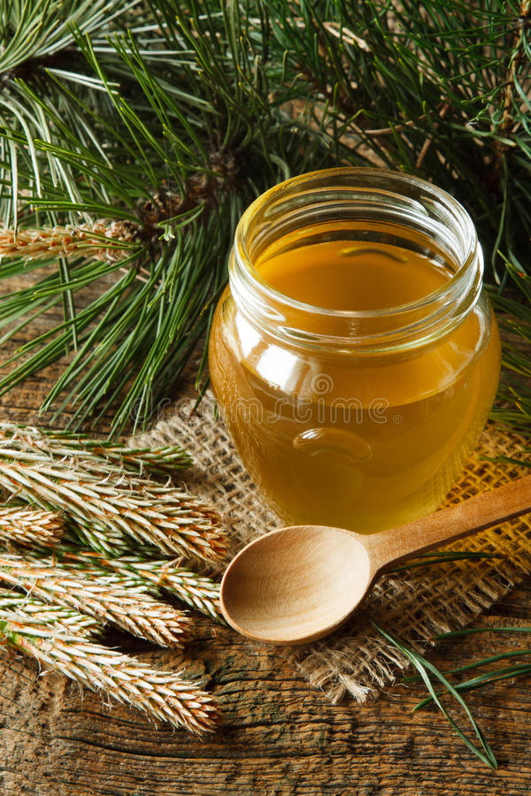 Pine syrup. Homemade syrup made from green young pine buds and sugar royalty free stock image