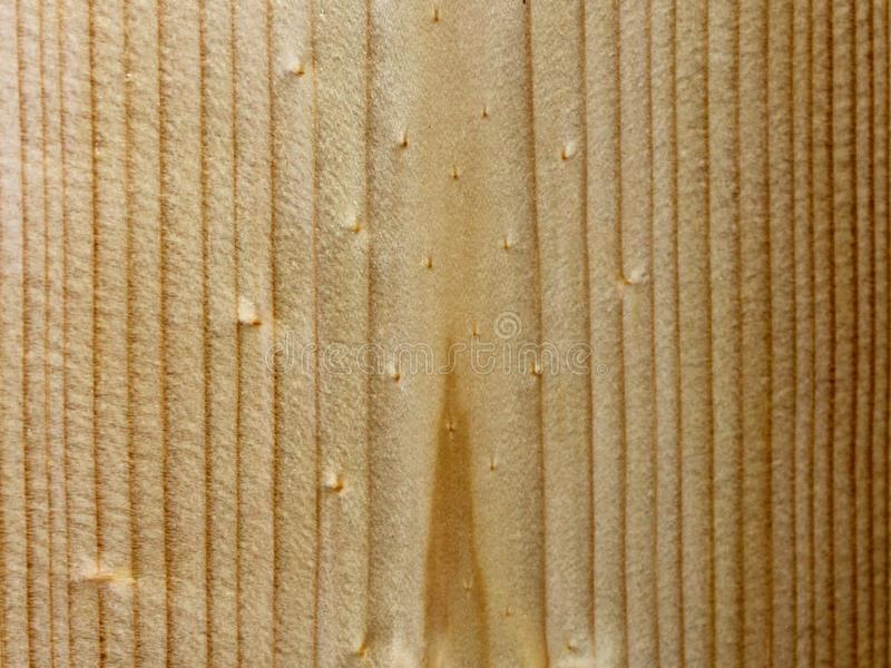 Pine texture background royalty free stock images