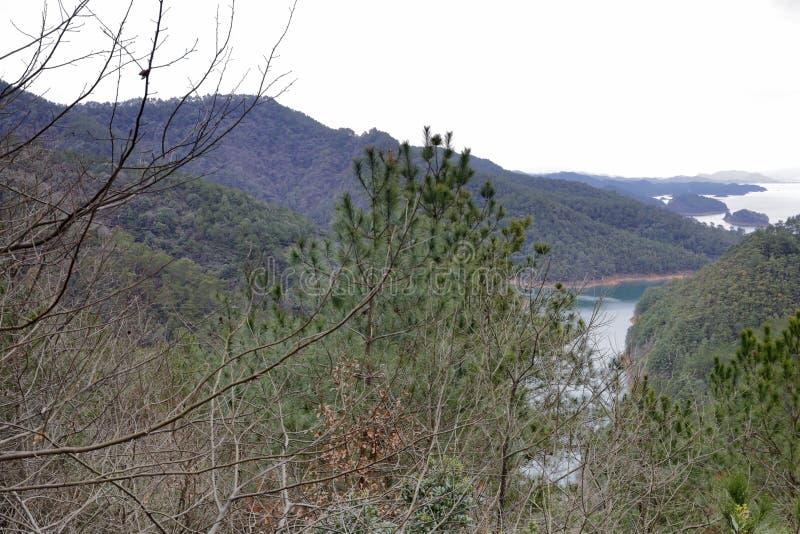Pine of the Thousand Island Lake in cloudy day, adobe rgb. Xin`anjiang Reservoir is located in Chun`an County, Hangzhou City, Zhejiang Province. Built in 1960 stock photos