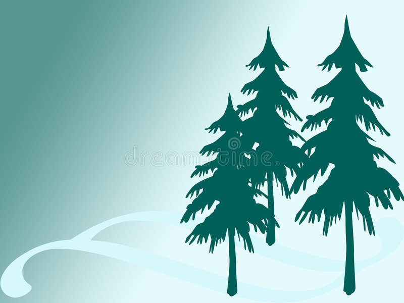Pine tree. Three pine tree on turquoise background