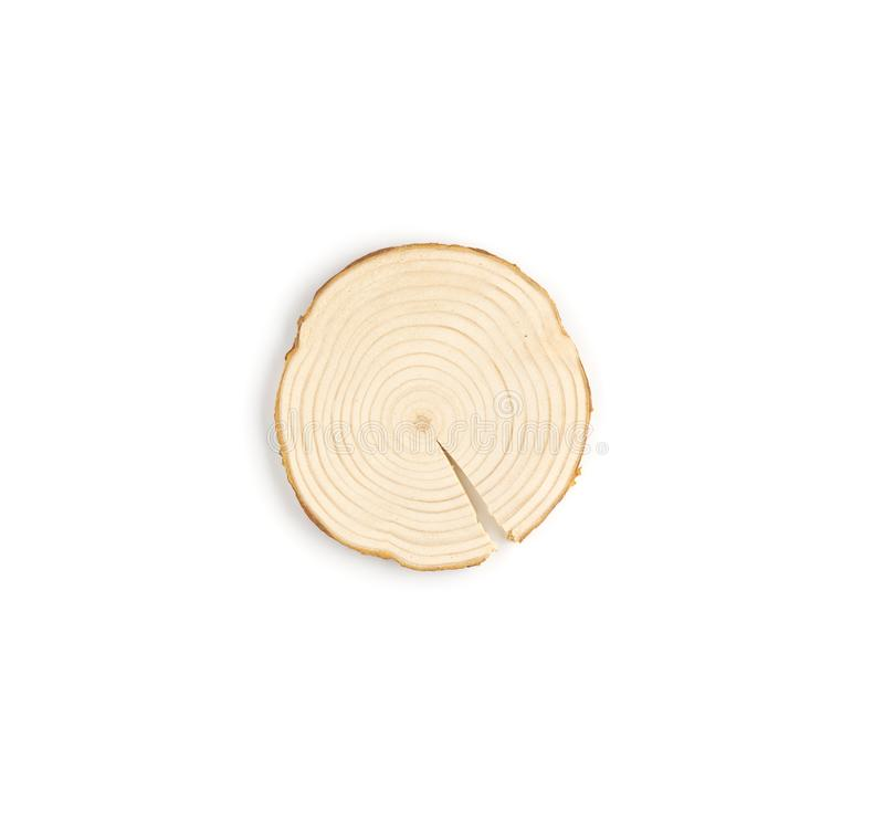 Pine tree cross-section with annual rings on white background. Lumber piece close-up, top view, isolated. Pine tree cross-section with annual rings on white stock photos
