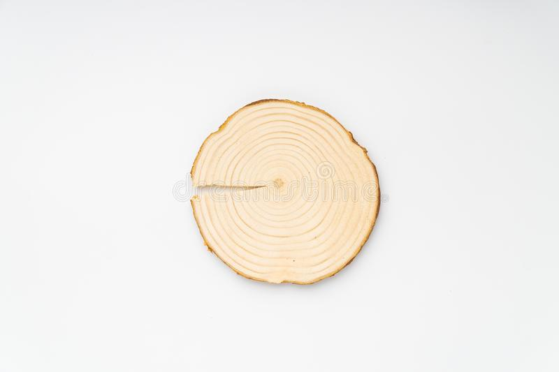 Pine tree cross-section with annual rings on white background. Lumber piece close-up, top view, isolated. Pine tree cross-section with annual rings on white royalty free stock photos