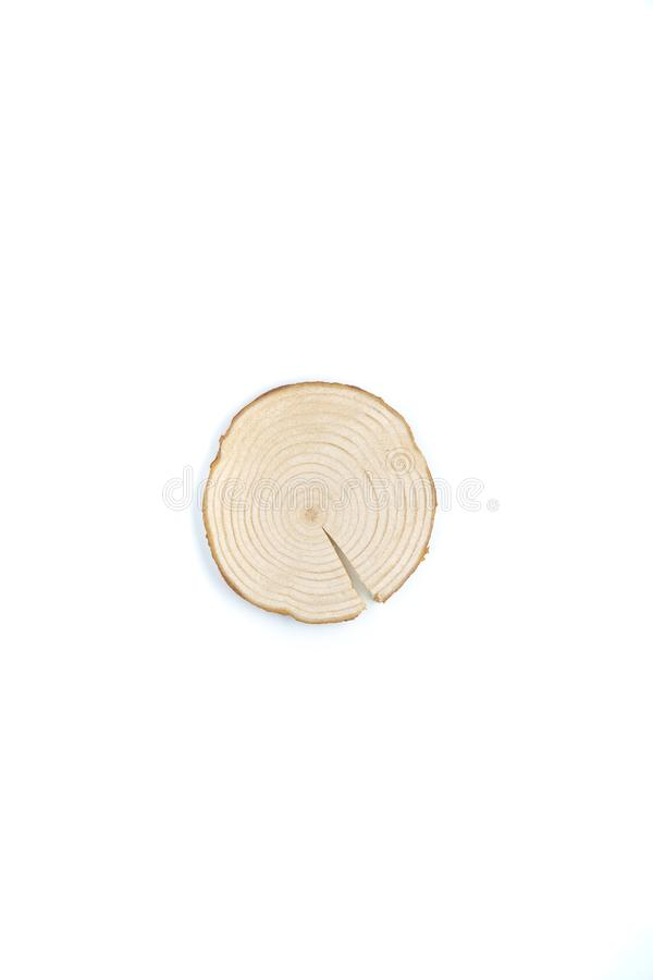 Pine tree cross-section with annual rings on white background. Lumber piece close-up, top view, isolated. Pine tree cross-section with annual rings on white stock photography