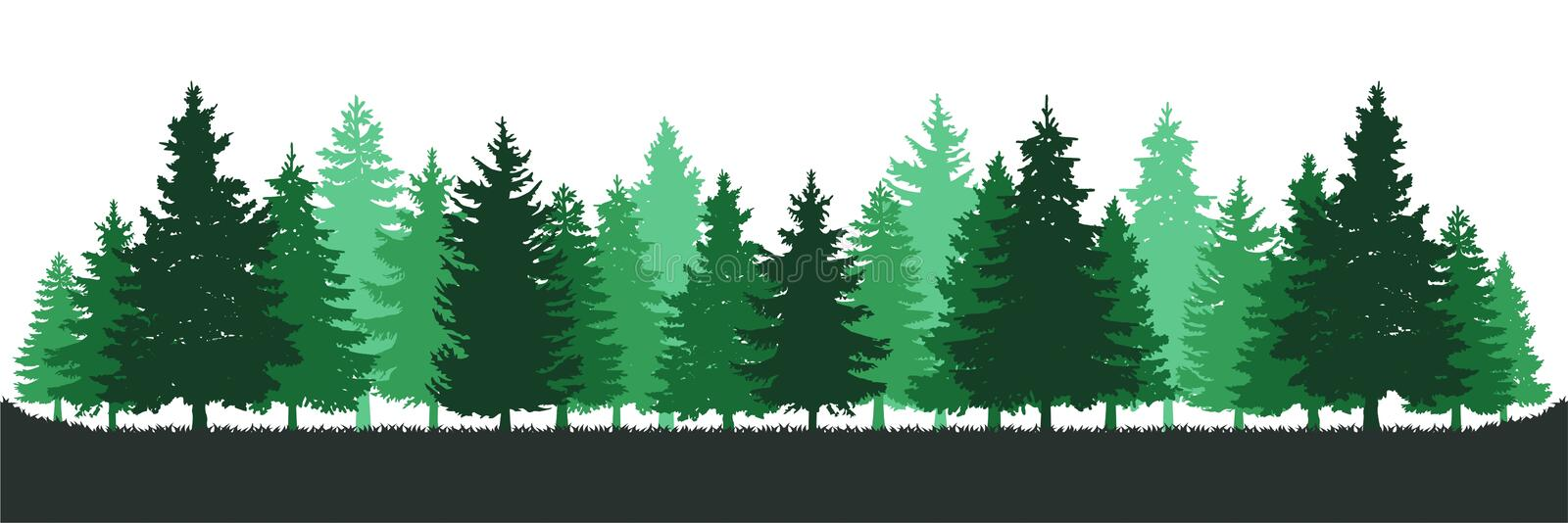 Green Pine Tree Forest Environment royalty free illustration