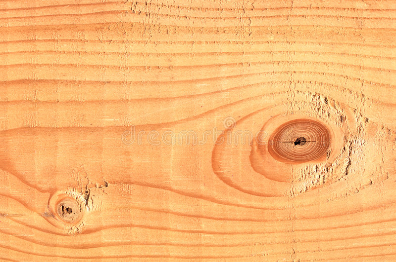 Pine Tree Lumber Macro royalty free stock image