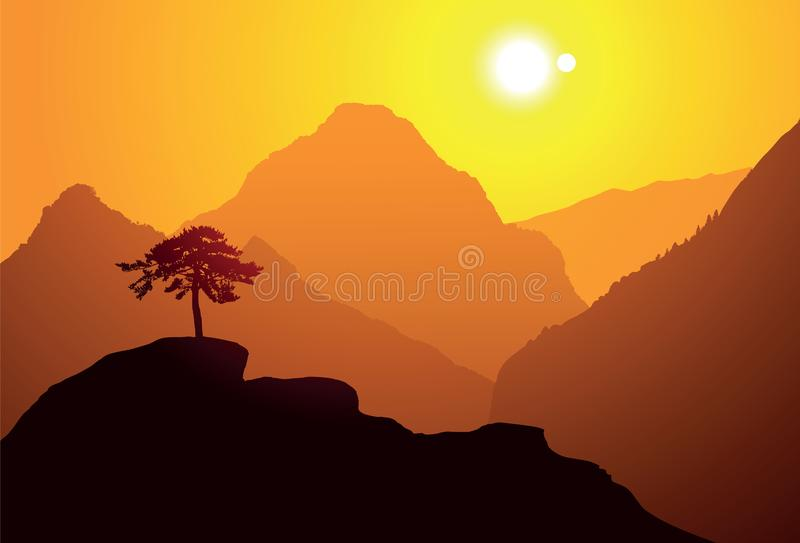 The pine tree on the mountain vector illustration