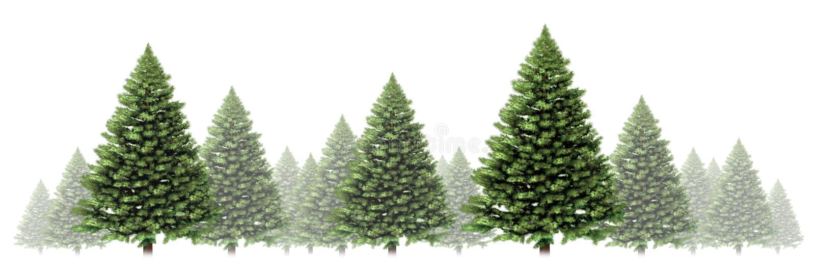 Download Pine Tree Winter Border Stock Illustration Of Decoration