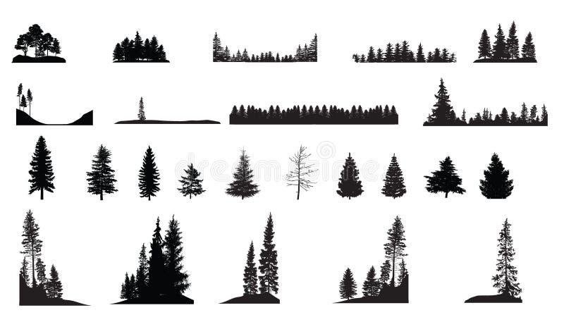 Pine Trees stock illustration