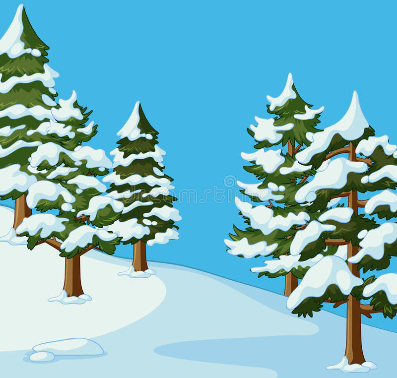 Pine trees covered with snow stock illustration