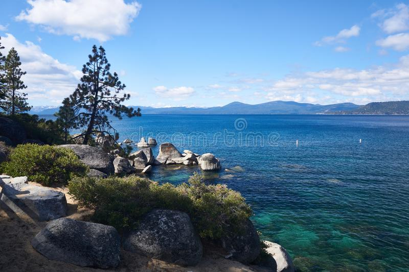Sand Harbor State Park in Lake Tahoe. Pine Trees growing out of the rocky shores along Lake Tahoe with the mountains in the background royalty free stock photos