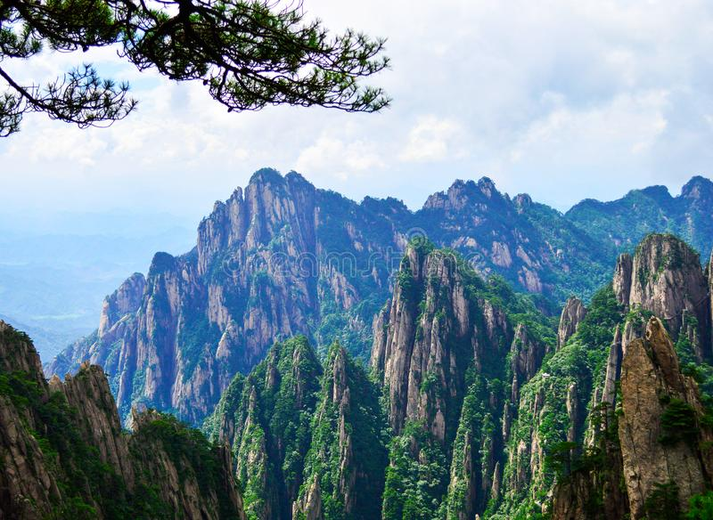 Pine Trees and Peaks of Huangshan Yellow Mountain at Anhui province China. Huangshan is a UNESCO World Heritage Site and one of China`s major tourist royalty free stock photos