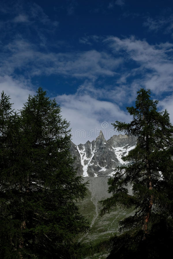 Pine Trees With Rock Mountain At Distance During Daytime Free Public Domain Cc0 Image