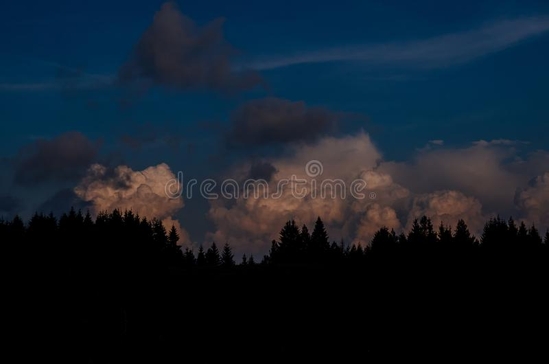 Pine trees silhouette against a cumulonimbus cloud. In the distance stock image