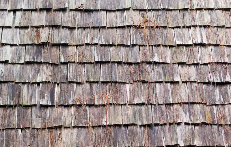Pine wood patterns. On the roof for background stock photo