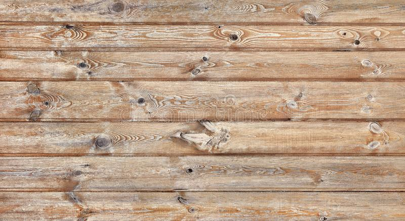 Pine wood planks. Wooden wall texture. Grunge background royalty free stock image