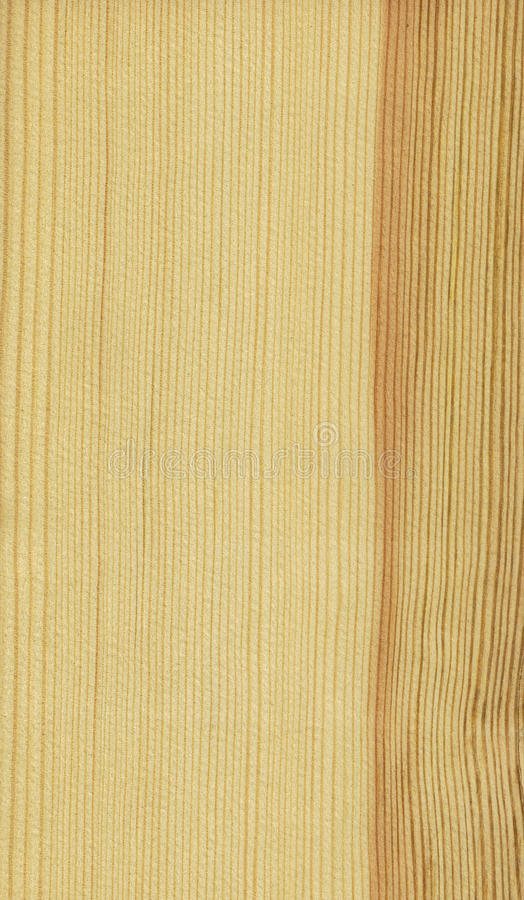 Free Pine (wood Texture) Royalty Free Stock Photography - 23701487