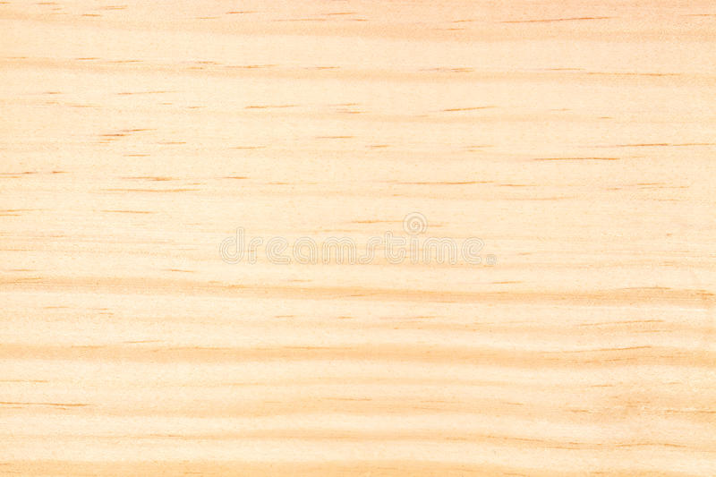 Pine Wood Texture stock image