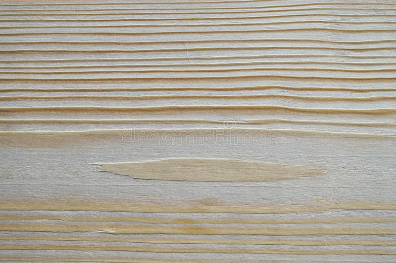 Pine wood texture. stock images