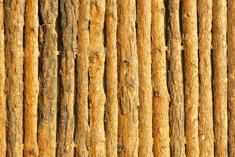 Pine Wood Wall Stock Photos