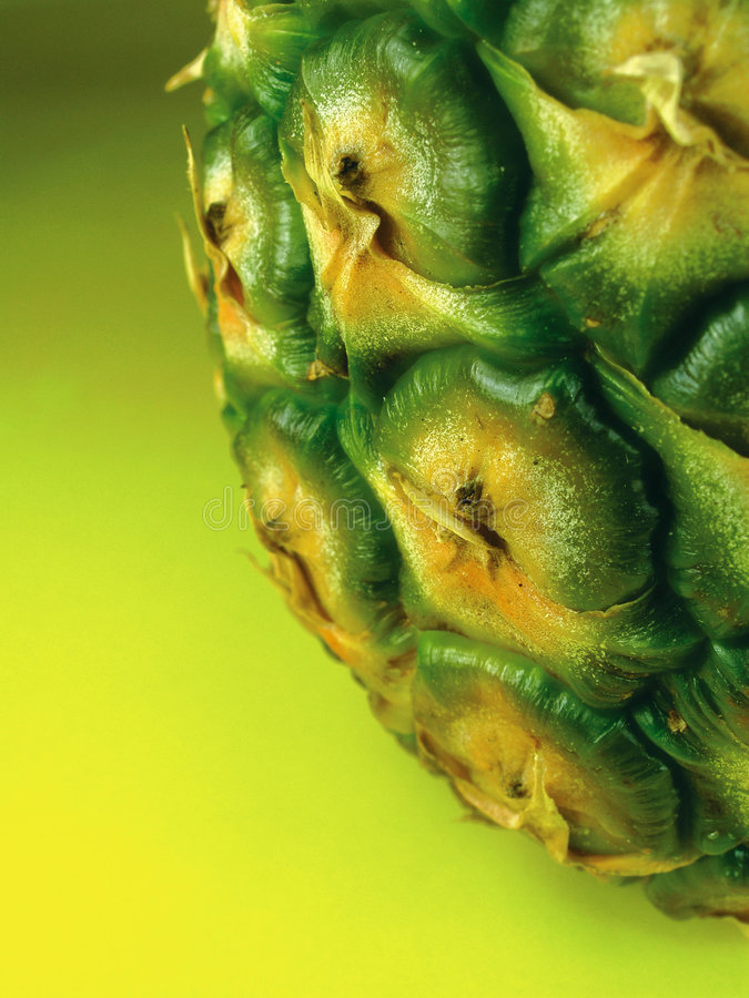 Download Pineapple 1 stock image. Image of sweet, food, green, juicy - 249755