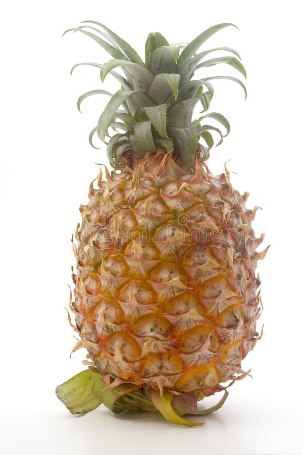 Download Pineapple stock photo. Image of sweet, food, juice, tropical - 1403504