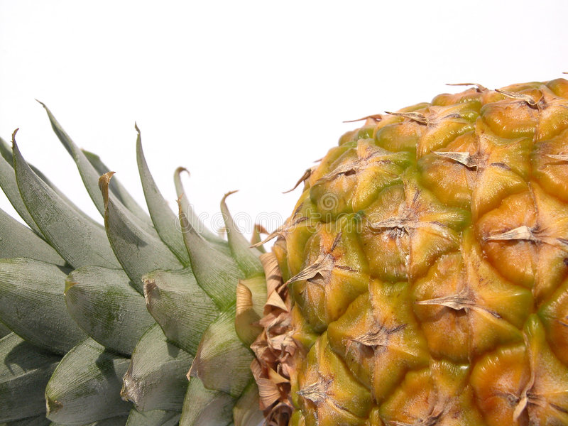 Download Pineapple stock photo. Image of nutrition, tasty, healthy - 164092