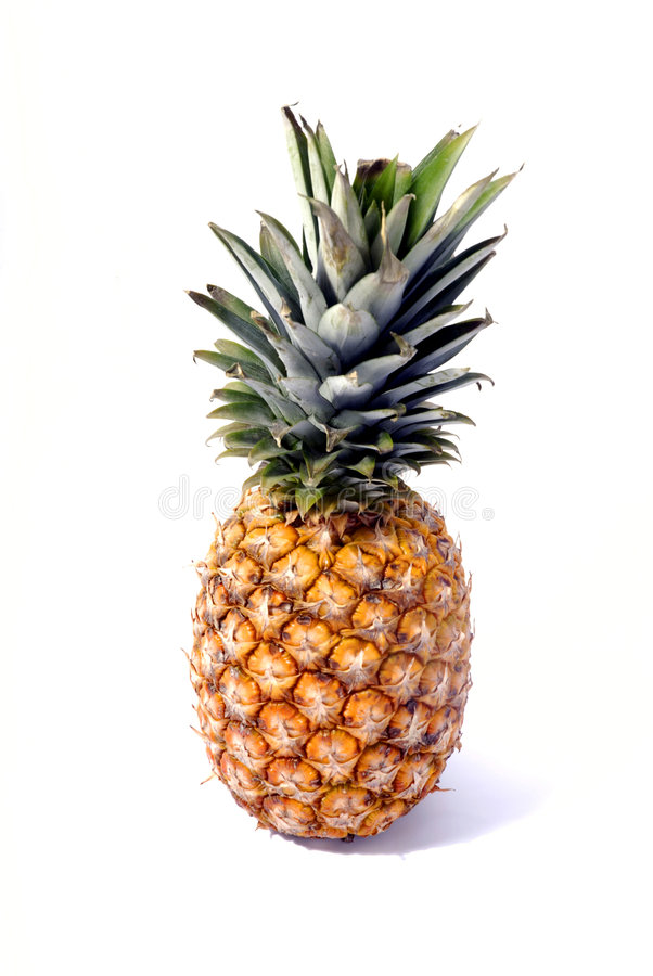 Free Pineapple Stock Photography - 1661452