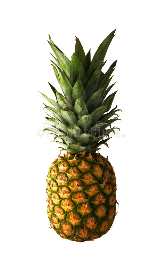 Download Pineapple stock photo. Image of yellow, colorful, touch - 175320