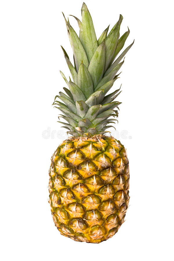 Free Pineapple Stock Photography - 22568732