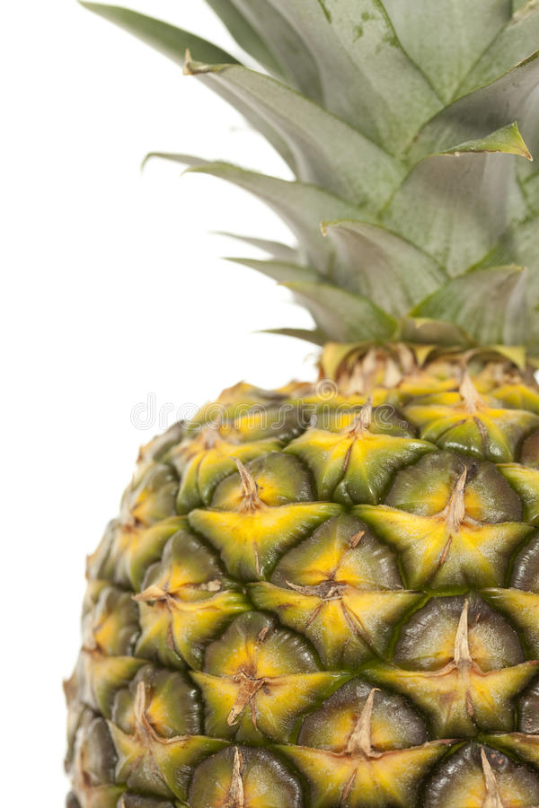 Download Pineapple Royalty Free Stock Photos - Image: 24494418