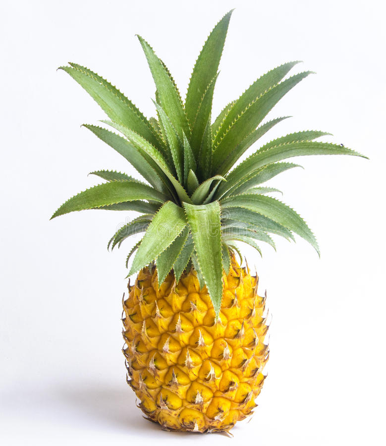 Download Pineapple Royalty Free Stock Photography - Image: 24805377