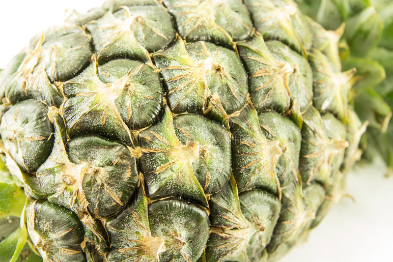 Download Pineapple stock image. Image of plant, pineapple, natural - 25566821