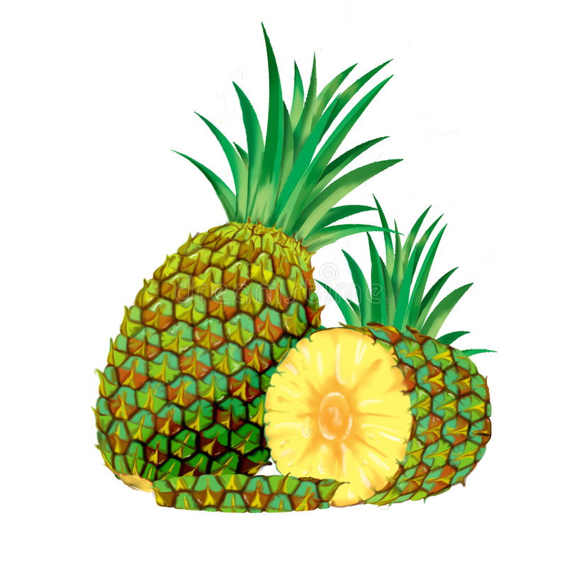 Pineapple. A Digital pineapple, perfect to be used on label, brochure, etc vector illustration