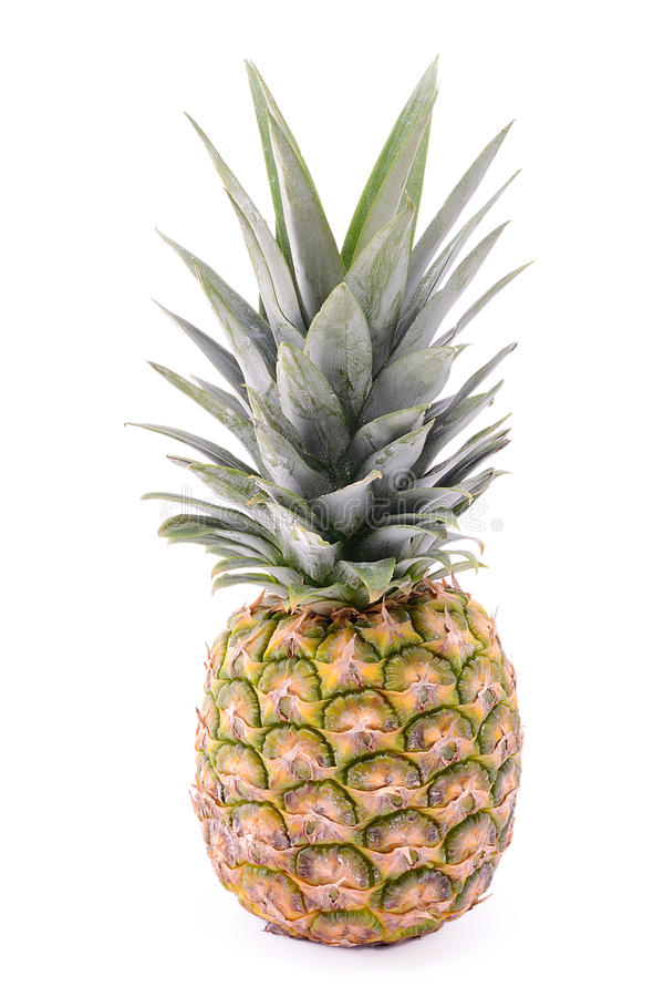 Download Pineapple stock image. Image of isolated, color, ananas - 27997981