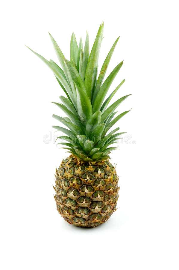 Download Pineapple stock photo. Image of vertical, image, ripe - 28459282