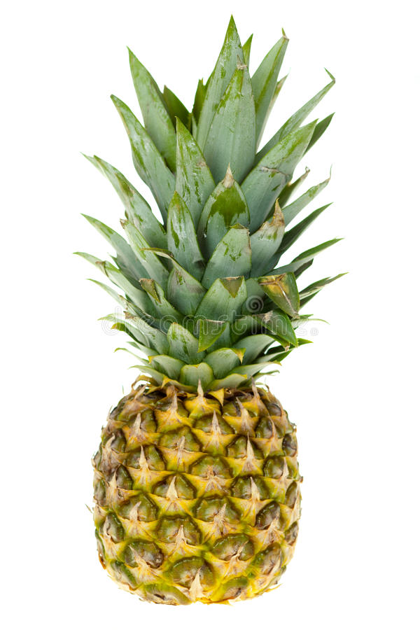 Download Pineapple stock image. Image of agriculture, fresh, green - 28482167